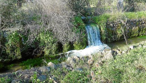 La font de Mestre Pere es una de las que abastecen de agua a la capital balear.