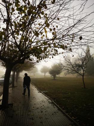 Imagen de la intensa niebla que se registró en días pasados en Mallorca.