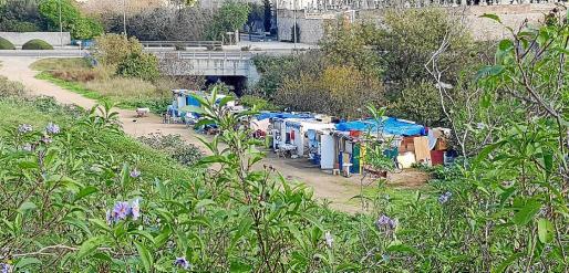 Desde el IMAS se reconoce que «el fenómeno de los asentamientos es relativamente nuevo y proviene de una tendencia de las personas sin hogar a agruparse para así protegerse mutuamente de posibles agresiones».