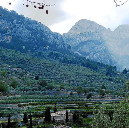 La Serra de Tramuntana fue declarada patrimonio mundial por la Unesco en junio de 2011 por su excepcional paisaje agrícola mediterráneo.