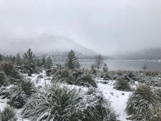 La nieve llegó en febrero de 2018 a la Serra de Tramuntana, a partir de 600 metros.