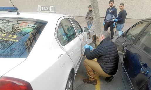Agentes de la Unidad de Policía Científica de la Policía Nacional inspeccionan uno de los taxis atracado.