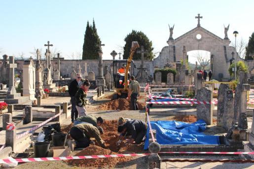 Los arqueólogos iniciaron las labores en los lugares indicados del cementerio de Llucmajor con la ayuda de una pequeña excavadora.