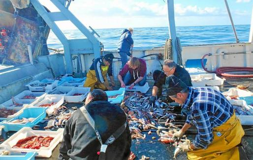 Imagen de una excursión en uno de los treinta barcos pesqueros que colaboran en este proyecto empresarial.