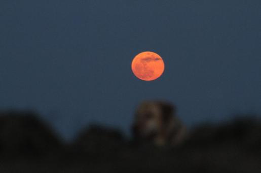 Imagen de la 'luna de sangre' vista desde Mahón en el mes de enero de 2018.
