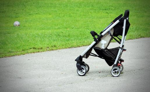El perro fue escondido en un carrito de bebé.