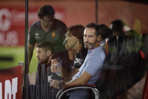 Vicente Moreno, entrenador del Real Mallorca, durante un partido de esta temporada.