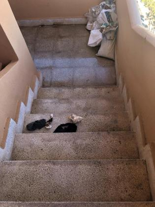 En el rellano donde dormía la mujer aún hay algunas de sus pertenencias.