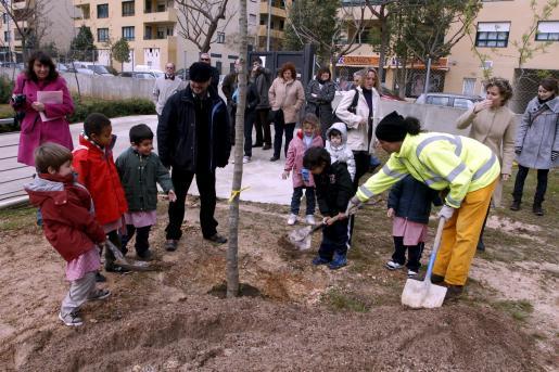 Los actos de la Setmana de l'arbre empezaron sus actividades en el colegio Marià Aguiló.