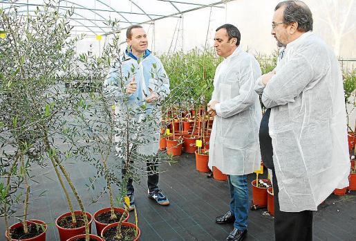 El jefe de Sanitat, Andreu Juan, explica los estudios a los responsables del ministerio.