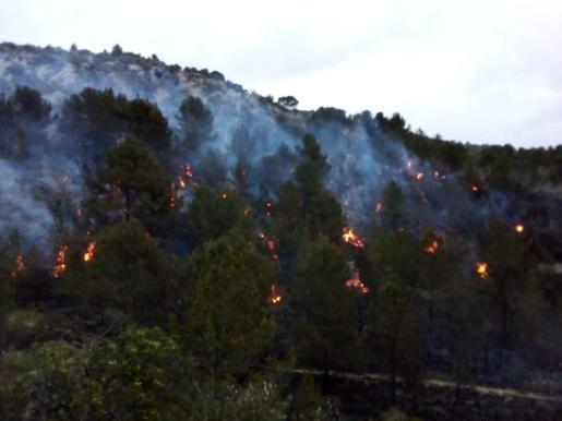 El incendio se ha producido en una zona boscosa.