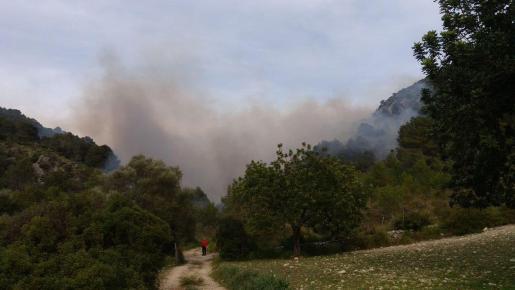 Una imagen del incendio de Son Ordines.
