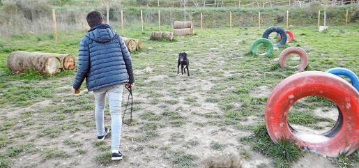 Uno de los objetivos de la tasa sería la financiación de espacios para perros, como este parque Agility.