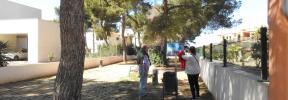 Herida una regidora del PP de Calvià tras el ataque de dos perros peligrosos