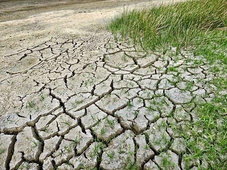 Las temperaturas medias de todas las estaciones son cada vez más elevadas. Es el verano es la estación en que más se nota.
