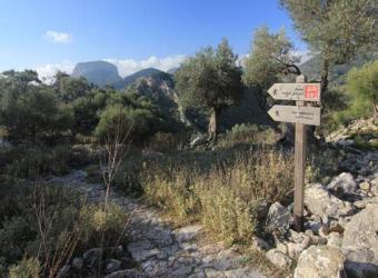 El Consell de Mallorca propone una red de rutas de la piedra seca durante todo el año