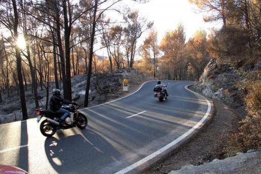 Carretera de Andratx a Estellencs después del grave incendio forestal.