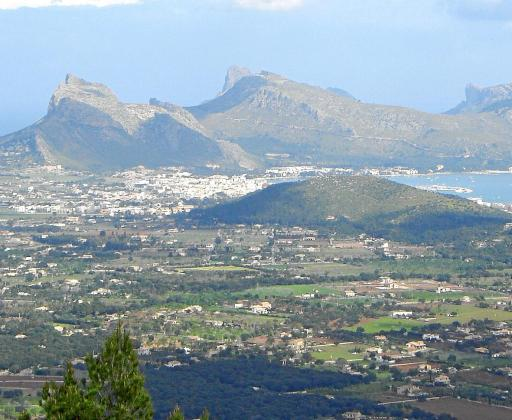 La mayoría de plazas vendidas corresponden a viviendas plurifamiliares del Port de Pollença.