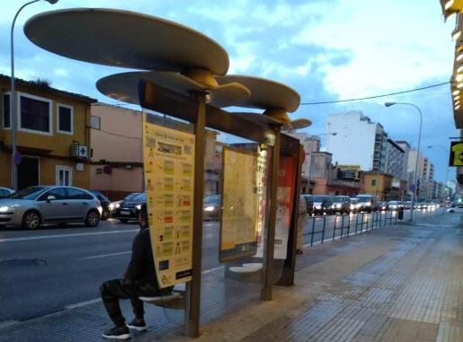 Cola, en la calle Aragón.