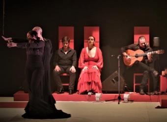La actuación flamenca 'Tejidos al tiempo' en Sa Màniga