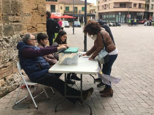 La votación en la consulta popular este sábado en Alcúdia.