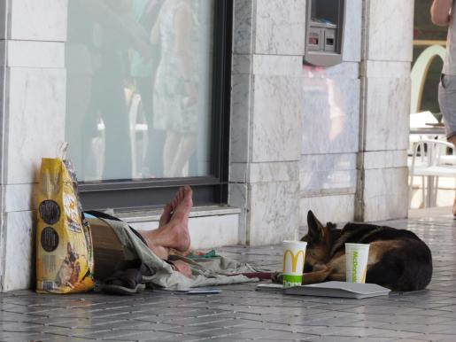 Un animal acompaña a un hombre que pide en la calle.
