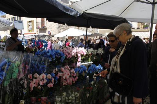Miles de personas pasaron por la feria y muchos adquirieron flores y plantas para sus viviendas y jardines.