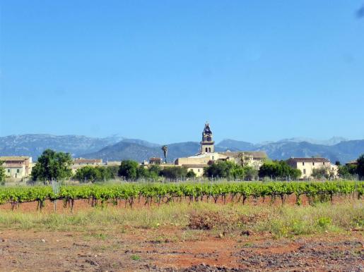 En Mallorca se registraron 22,7 l/m², un 49 % menos de lo habitual. Vista de Santa Maria.