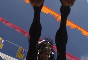 Festes de Sant Bartomeu