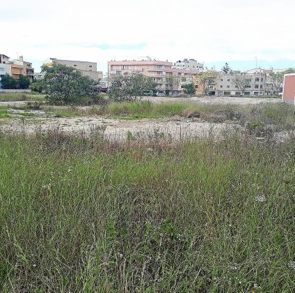 Aunque el solar de Majórica tiene usos urbanos y el Ajuntament proyecta crear una gran zona verde, actualmente los terrenos son un gran descampado de 18.000 metros cuadrados.