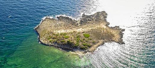 Na Guardis está ubicado en el municipio de ses Salines y solo está excavado un treinta por ciento del yacimiento.