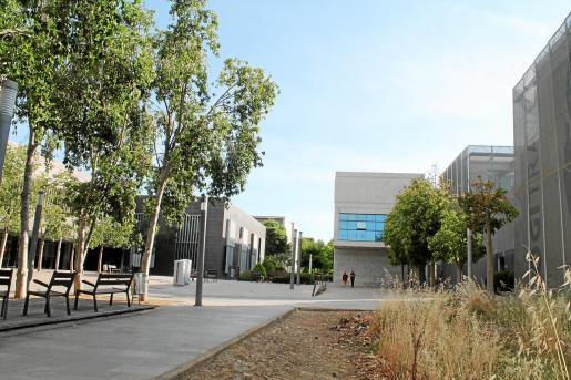 El Parc Bit cuenta con varios espacios ajardinados y un gran parking adyacente.