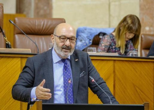 El portavoz parlamentario de Vox en Andalucía, Alejandro Hernández, durante una intervención en el Pleno.