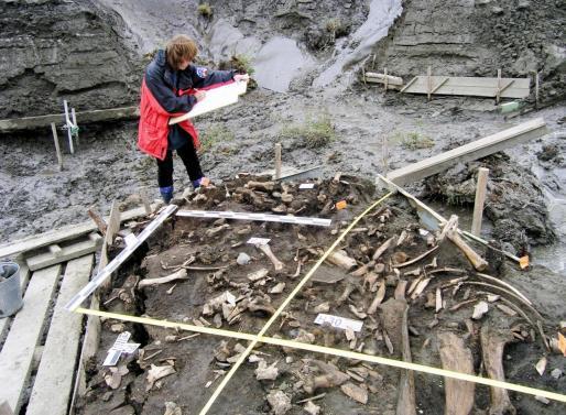 Fotografía facilitada por la Universidad de Cambridge, de la excavación arqueológica en el noreste de Siberia.