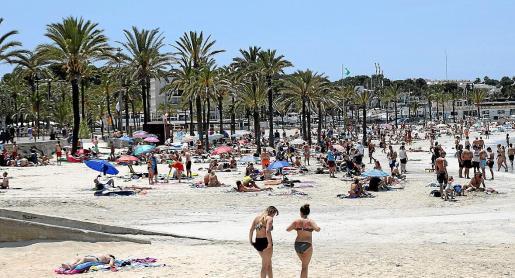 Aspecto que ofrecía la playa del Arenal en la zona de Llucmajor en la mañana de este jueves.