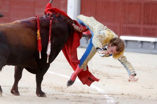 El torero valenciano Román, cogido de forma dramática por el tercer toro de la corrida de este domingo en Las Ventas.