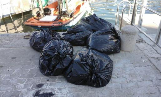 El volumen medio de residuos recogidos ha sido de 383,10 kilos.