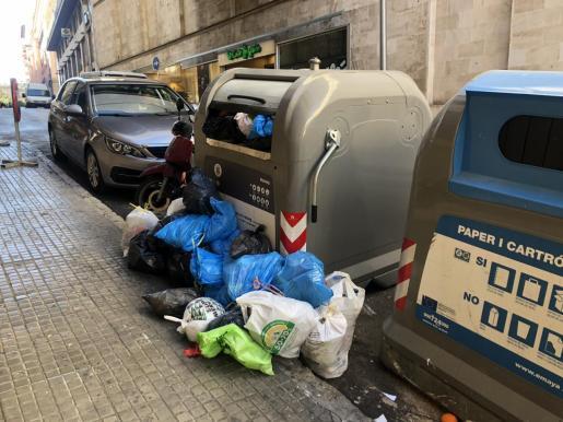 Los restos de comida en las calles motivan que las ratas abandonen las alcantarillas porque en la superficie les es más fácil alimentarse.