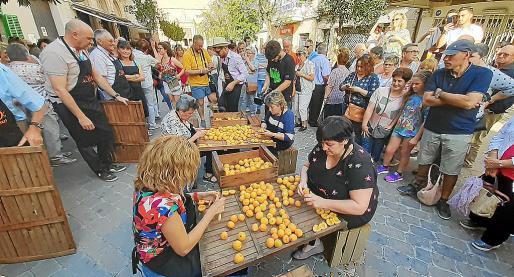 Los albercocs son el único reclamo para atraer gente a la pequeña feria de Porreres.