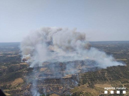 Incendio en Torre de l'Espanyol.