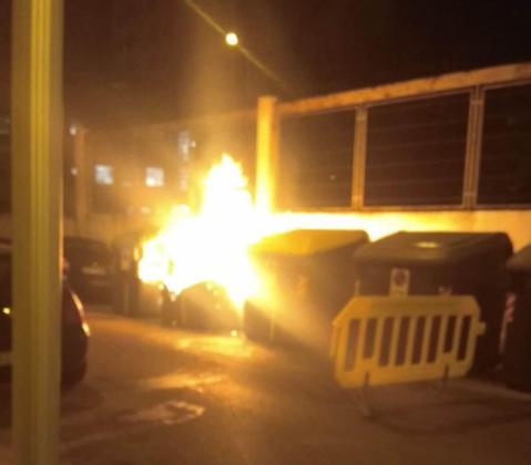 Policía Local y Bombers de Palma han intervenido en la extinción de los fuegos.