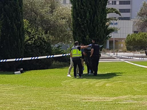 La zona donde se ha localizado el cadáver ha sido precintada.