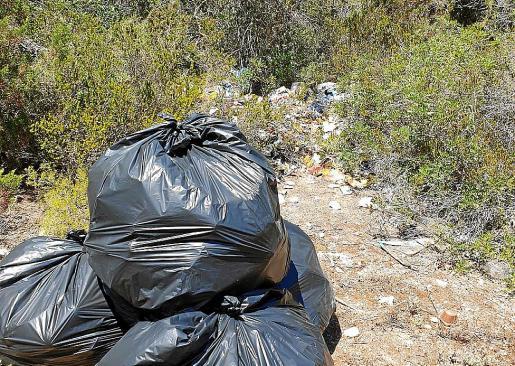 Agentes forestales han realizado la limpieza de las basuras vertidas entre la maleza.