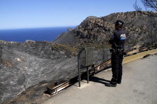 Las llamas calcinaron 1.278 hectáreas de la Serra de Tramuntana.