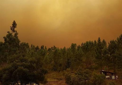 Más de 800 bomberos se concentran en el último gran incendio descontrolado en Portugal