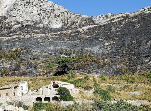 Una de las zonas afectadas por el incendio de Andratx, el mayor registrado en Balears.