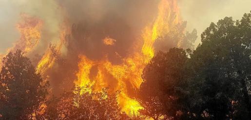 La rápida intervención de Bomberos, Ibanat, Protección Civil y Guardia Civil evitó que el incendio fuera a más.
