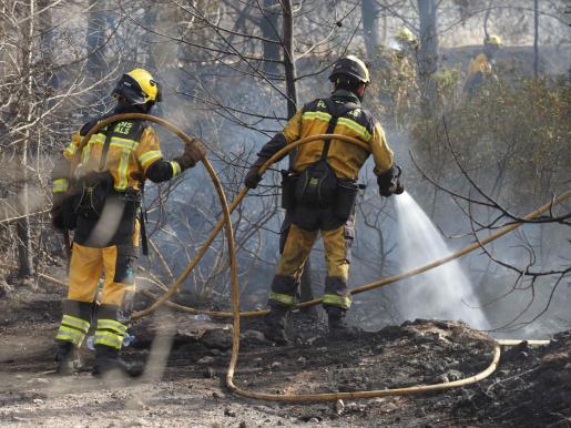 Efectivos del Ibanat trabajando en la zona del incendio