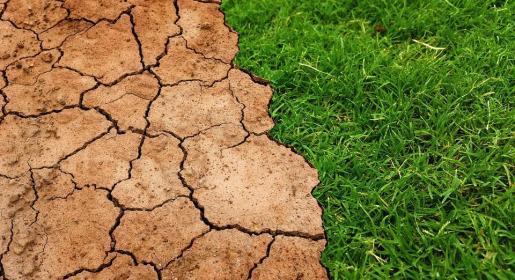 El Día de Sobrecapacidad de la Tierra varía cada año y se calcula tras comparar la demanda anual de recursos naturales con la capacidad que realmente tiene la Tierra para regenerarlos.