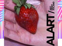 Alart'19, noche de arte en Alaró